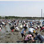 潮干狩り 海の公園